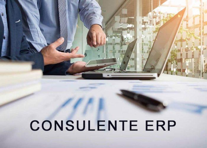 TIME ricerca consulenti ERP Senior e Junior